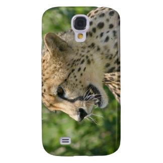 Snarling Cheetah iPhone 3G Case Galaxy S4 Cases