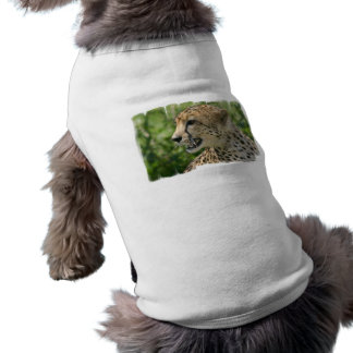 Snarling Cheetah Pet Shirt