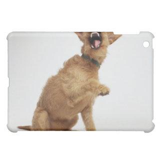 Snarling Dog iPad Mini Case