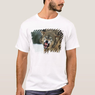 Snarling gray wolf T-Shirt