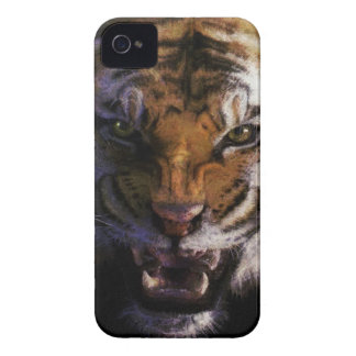 Snarling Tiger Wildlife Fine Art Cell Phone Case iPhone 4 Case-Mate Case