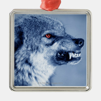Snarling wolf (Canis Lupus), profile (Digital Metal Ornament