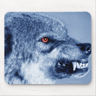 Snarling wolf (Canis Lupus), profile (Digital Mouse Pad