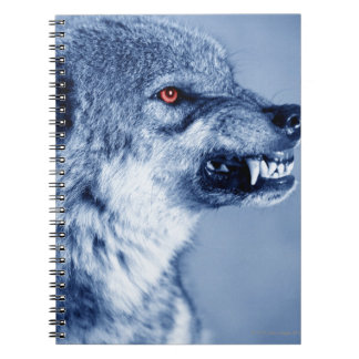 Snarling wolf (Canis Lupus), profile (Digital Spiral Notebooks