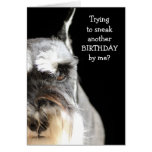Sneak another birthday? card