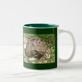 Sneak Preview Two-Tone Coffee Mug