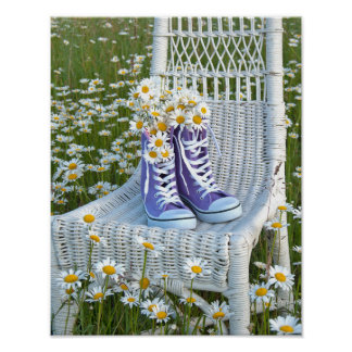 sneakers and daisies poster