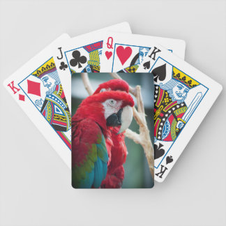 Sneaky Birds Bicycle Poker Cards