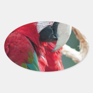 Sneaky Birds Oval Sticker