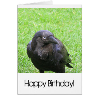 Sneaky Crows Greeting Card