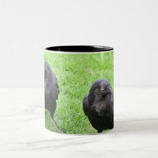 Sneaky Crows Two-Tone Coffee Mug