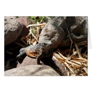 Sneaky Iguana Card