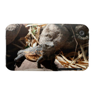 Sneaky Iguana iPhone 3 Cover
