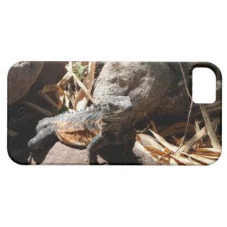 Sneaky Iguana iPhone SE/5/5s Case