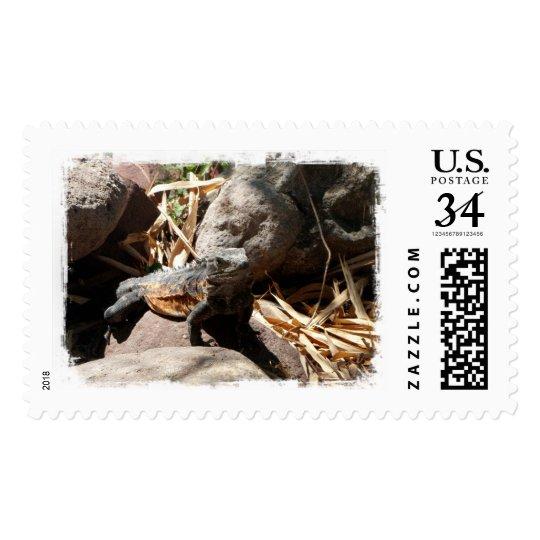 Sneaky Iguana Postage