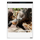 Sneaky Iguana PS3 Slim Console Decals