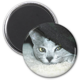 Sneaky Karma 2 Inch Round Magnet