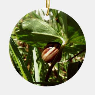 sneaky snail ceramic ornament