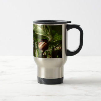 sneaky snail mugs