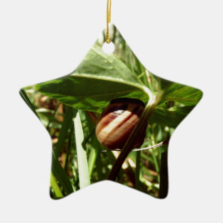 sneaky snail Double-Sided star ceramic christmas ornament
