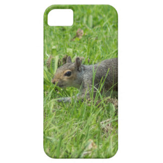 Sneaky Squirrel Case For The iPhone 5