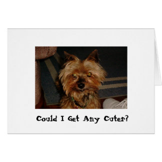Snickers -  Could I Get Any Cuter? Card