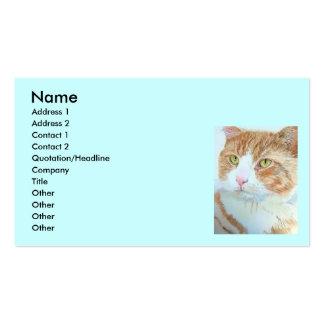 Snickers las tarjetas de visita del gato