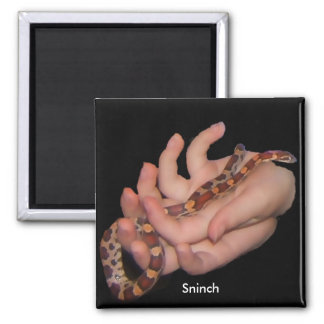 Sninch the Corn Snake Magnet