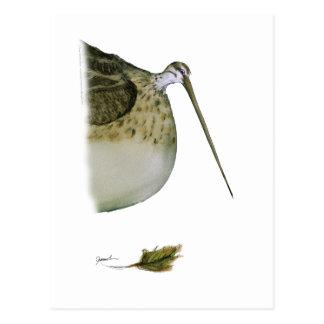 snipe bird, tony fernandes postcard