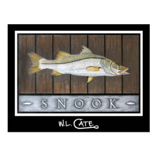Snook Postcards