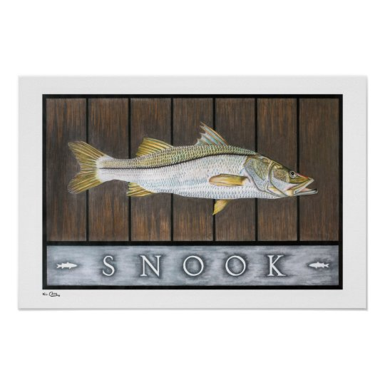 Snook Posters, Prints and Frames