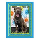 Snoop - Neopolitan Mastiff -3F Postcard