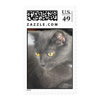Snoops Cat in Deep Thought Stamp