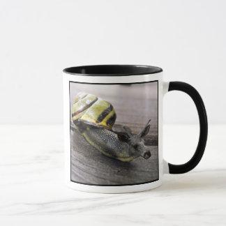 "Snoose ""New"" mug"