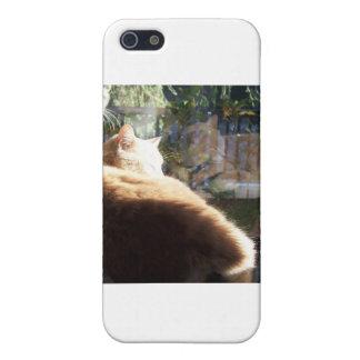 Snoozin' iPhone 5 Case