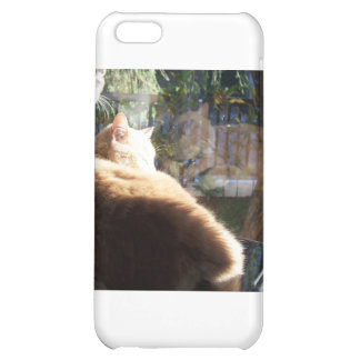 Snoozin' iPhone 5C Covers
