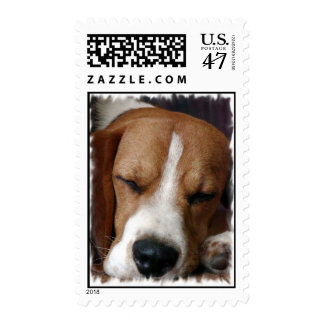 Snoozing Beagle Postage Stamp