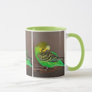 Snoozing Budgie Mug