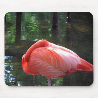 Snoozing Flamingo Mouse Pad