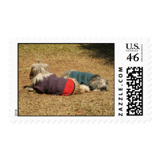 Snoozing in Nong Khai ... Isaan, Thailand Postage Stamp