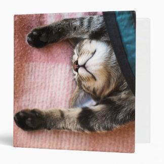 Snoozing Kitten Binder