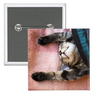Snoozing Kitten Pinback Button