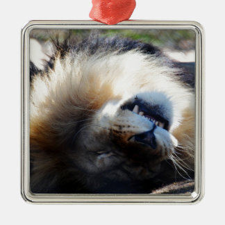 Snoozing Metal Ornament