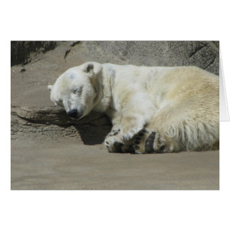 Snoozing Polar Bear Card