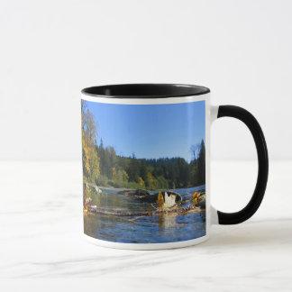 Snoqualmie River Mug