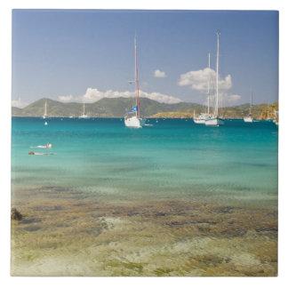 Snorkelers en la ensenada idílica de la ensenada d azulejo cuadrado grande