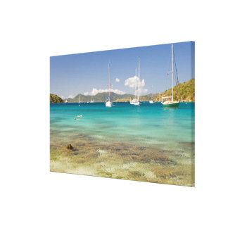 Snorkelers in idyllic Pirates Bight cove, Bight, Canvas Print
