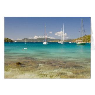 Snorkelers in idyllic Pirates Bight cove, Bight, Card