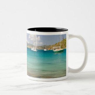 Snorkelers in idyllic Pirates Bight cove, Bight, Mug