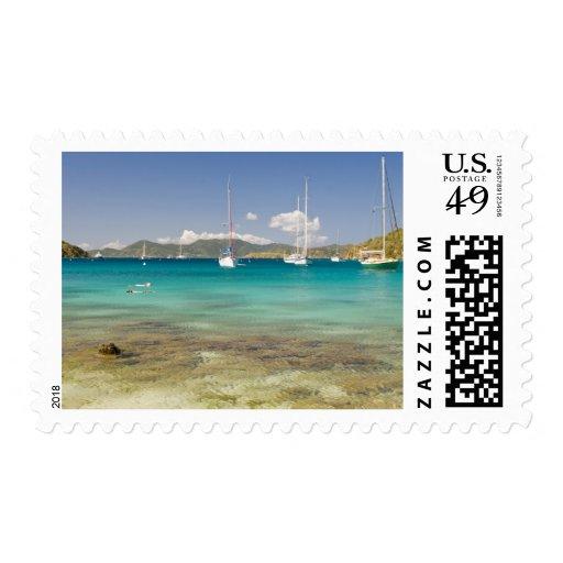 Snorkelers in idyllic Pirates Bight cove, Bight, Postage